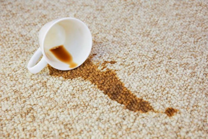 Cup of coffee fell on carpet. Stain is on floor.